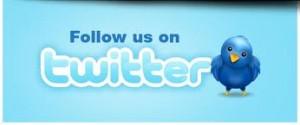 Twitter-Termesnator